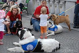 cani d'aiuto