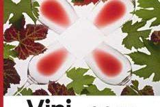 I vini del Garda nella guida VINIPLUS® 2011