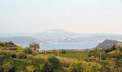 TAV: il potenziamento della linea storica fra Brescia e Verona è la soluzione ribadita.