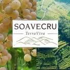 SOAVECRU-TERRA VIVA