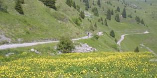 Fotobook al Parco Alto Garda Bresciano