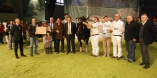Montichiari (Bs): BILANCIO DELLA FIERA AGRICOLA E ZOOTECNICA