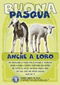 locandina pasqua P