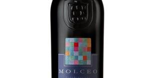 gambero rosso premia 4 vini lugana