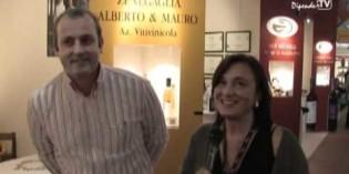 Cantina Zenegaglia<br>Alberto & Mauro