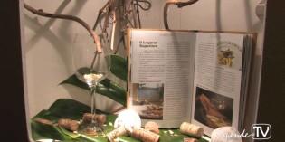 Consorzio Lugana Doc<br>intervista a direttore e presidente 2010