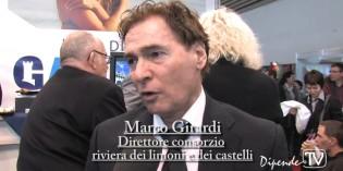 Intervista a Marco Girardi Consorzio riviera castelli