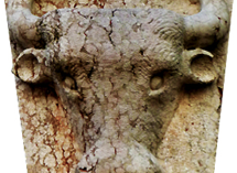 Caprino Veronese: Ex Macello Bene Comune