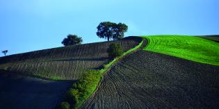 Monastero di Montebello – Isola del Piano (PU): BioEuropa 2014: dove le vie degli agricoltori s'incontrano