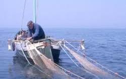 Lago di Garda Trentino: Permessi per la pesca nell'Alto Garda