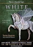 cavalli white