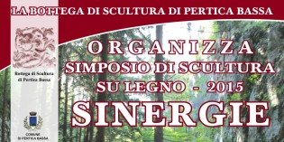 """Val Sabbia: La Bottega di Scultura organizza """"Sinergie"""", simposio sulla scultura del legno"""