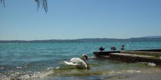 Lago di Garda: i livelli massimi e minimi