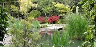 Giardiniere: professione riconosciuta