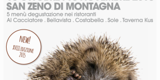 San Zeno di Montagna (VR): castagne, Bardolino & Monte Veronese