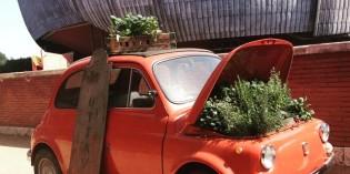Roma: Festival del Verde e del Paesaggio il 13, 14 e 15 maggio 2016