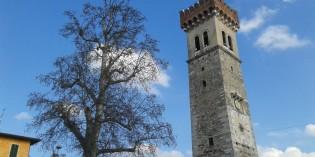 Lonato del Garda: censimento degli alberi monumentali