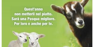 """Fondo Amici di Paco lancia le campagne """"Buona Pasqua… anche a loro"""" e """"Lasciamoli vivere"""""""