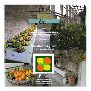Giardini Agrumi (1)