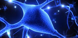 I videogiochi migliorano le connessioni cerebrali nei pazienti con sclerosi multipla