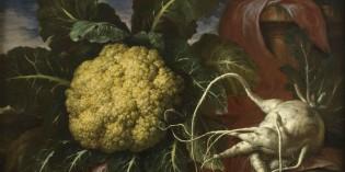 """Torino – """"Eccentrica Natura. Frutti e ortaggi stravaganti e bizzarri nei dipinti di Bartolomeo Bimbi per la famiglia Medici"""""""