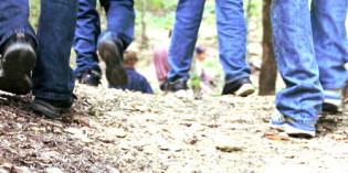Edolo: l'Università della montagna opsita venti studenti del Corso di Laurea Magistrale Interateneo in progettazione delle aree verdi e del paesaggio
