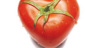 ORTOFRUTTA, FRUIT&VEG SYSTEM: LA PAROLA CHIAVE È SOSTENIBILITÀ