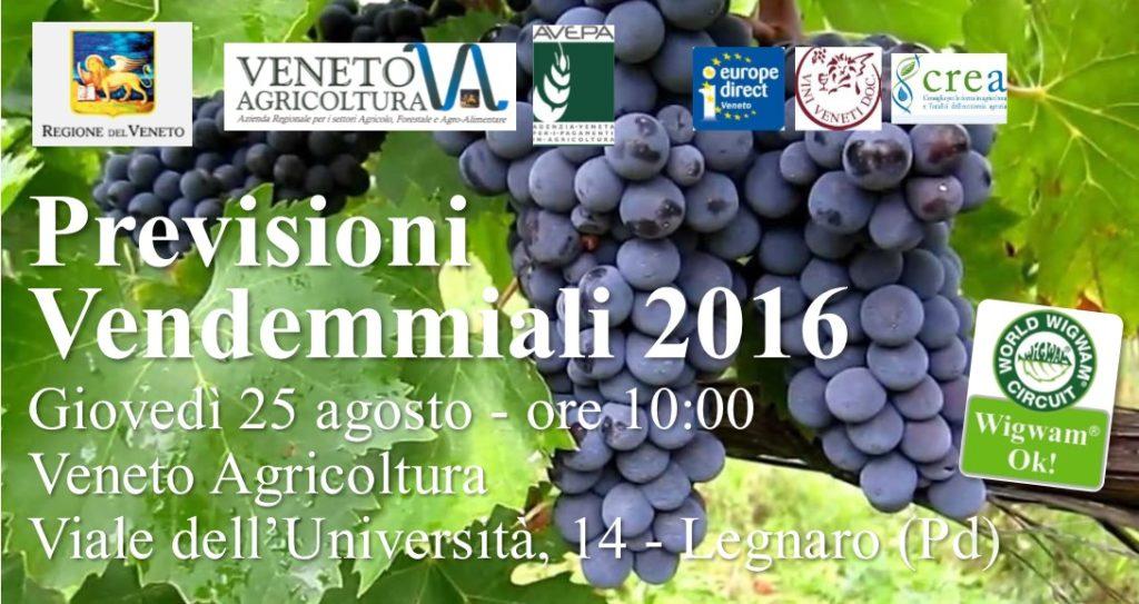 wigwam-banner-veneto-agricoltura-vendemmiali-2016-1