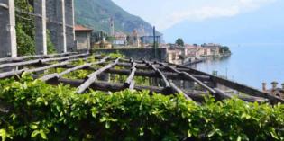 Nutrire il Lago di Garda e i suoi ospiti