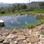 Vera Luciani: estetica e rispetto dell'ambiente con il BIOLAGO