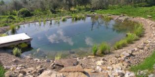 """Salò: Vera Luciani presenta """"Il biolago: una alternativa ecosostenibile ed ecocompatibile alla piscina tradizionale"""""""