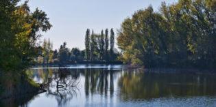 BOSCHI A NATALE 2016, domenica 11 dicembre: 14 proposte di visita tra parchi, oasi e aree naturali del Veneto