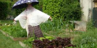 SLOW FOOD GARDA: PROGETTO ORTO IN CONDOTTA