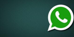 Social e sicurezza: Whatsapp garantisce la privacy dei messaggi, ma non è così in tutti i casi