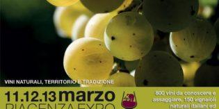 Piacenza – SORGENTEDELVINO LIVE 2017