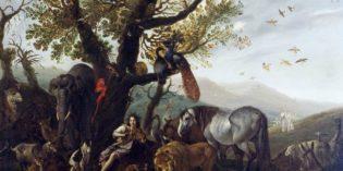 Genova – SINIBALDO SCORZA – Favole e natura all'alba del Barocco
