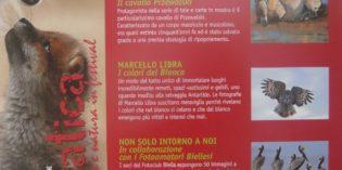 """Biella – """"SELVATICA"""" – Arte e Natura in Festival"""