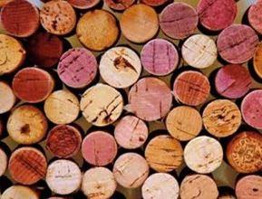 Go Wine - Vini veneto a Milano
