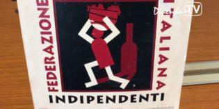 Desenzano del Garda: VIGNAIOLI IN CASTELLO