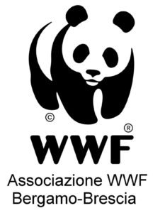 wwf Bergamo - Brescia