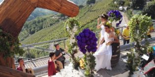 eventi: Trentinowinefest 2019