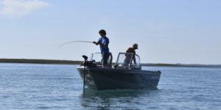 Pesca, emergenza Lago di Garda i pescatori chiedono interventi urgenti ai tre assessori regionali di Lombardia, Veneto e Trentino