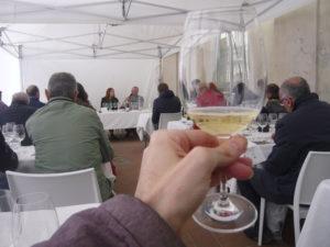 Best Wine Stars 4